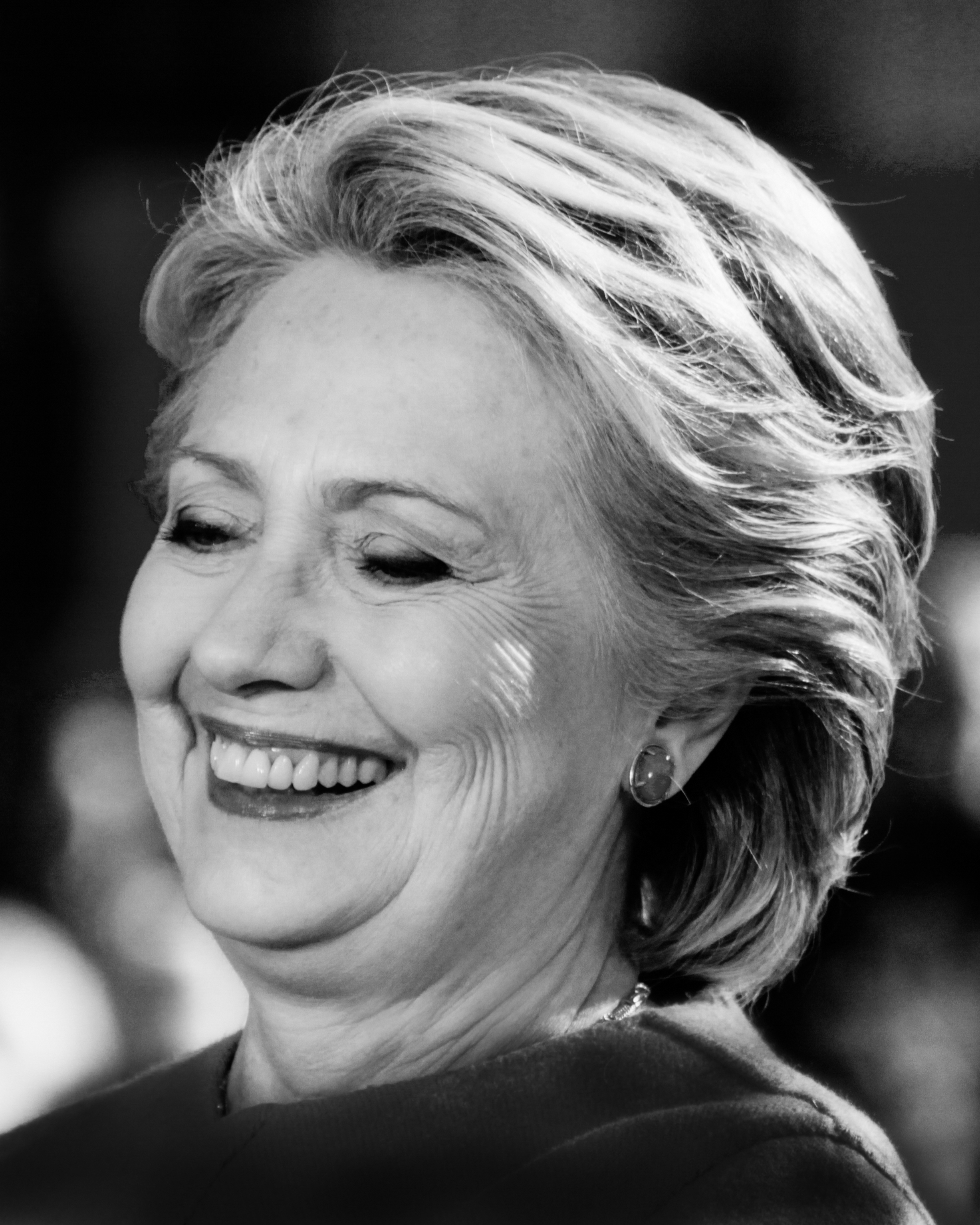 Hillary Clinton Portrait 17