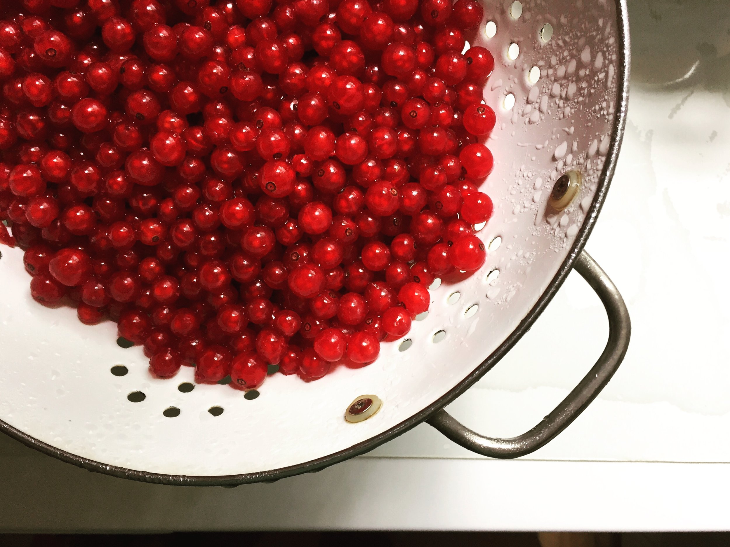 Gorgeous Red Currants! Growing our own and buying from experienced Northeast growers allows us to make preserves with truly ripe fruit.