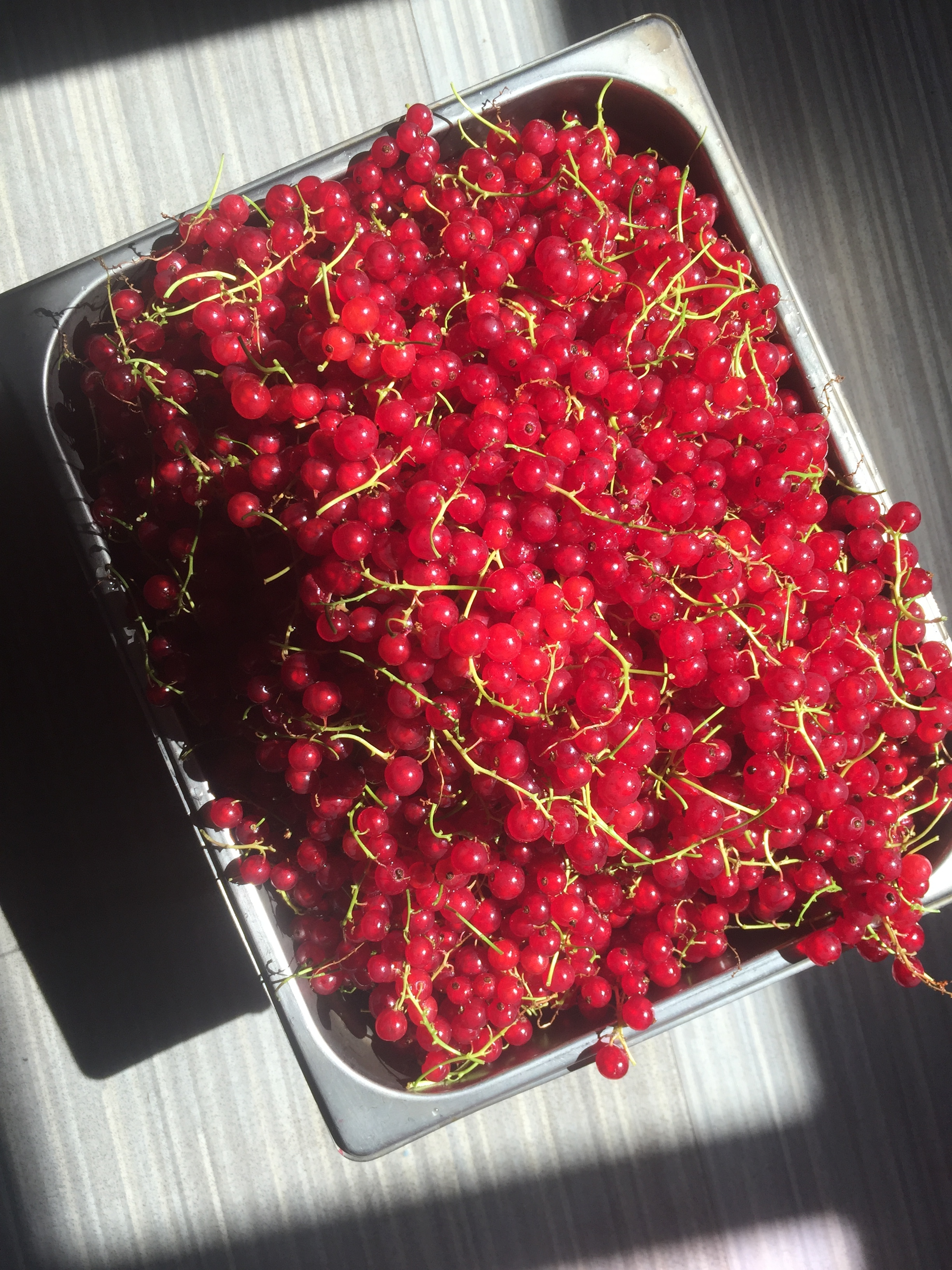 These currants are some of the most visually stunning fruit to work with each summer.