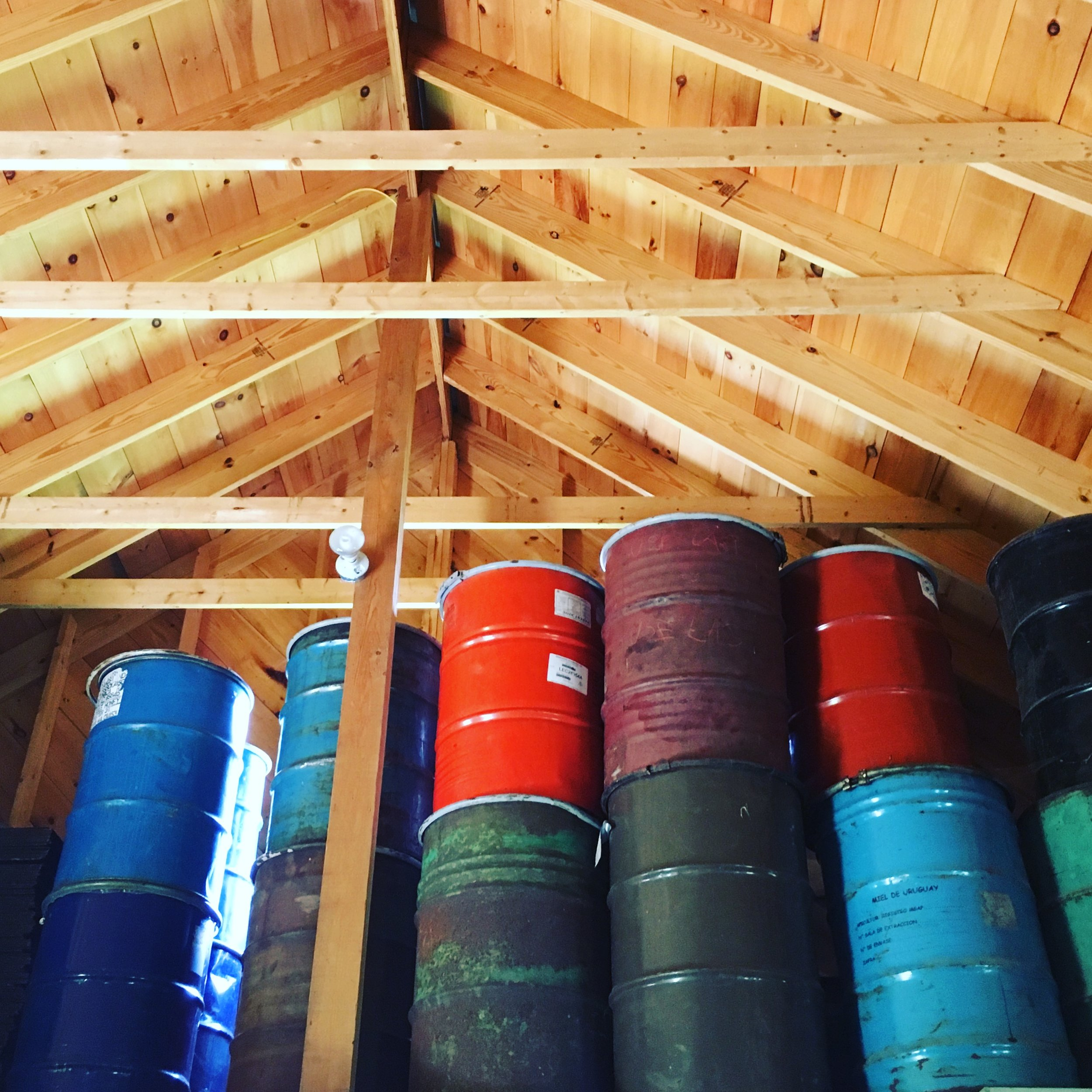 Over-wintering empty barrels in the rafters.