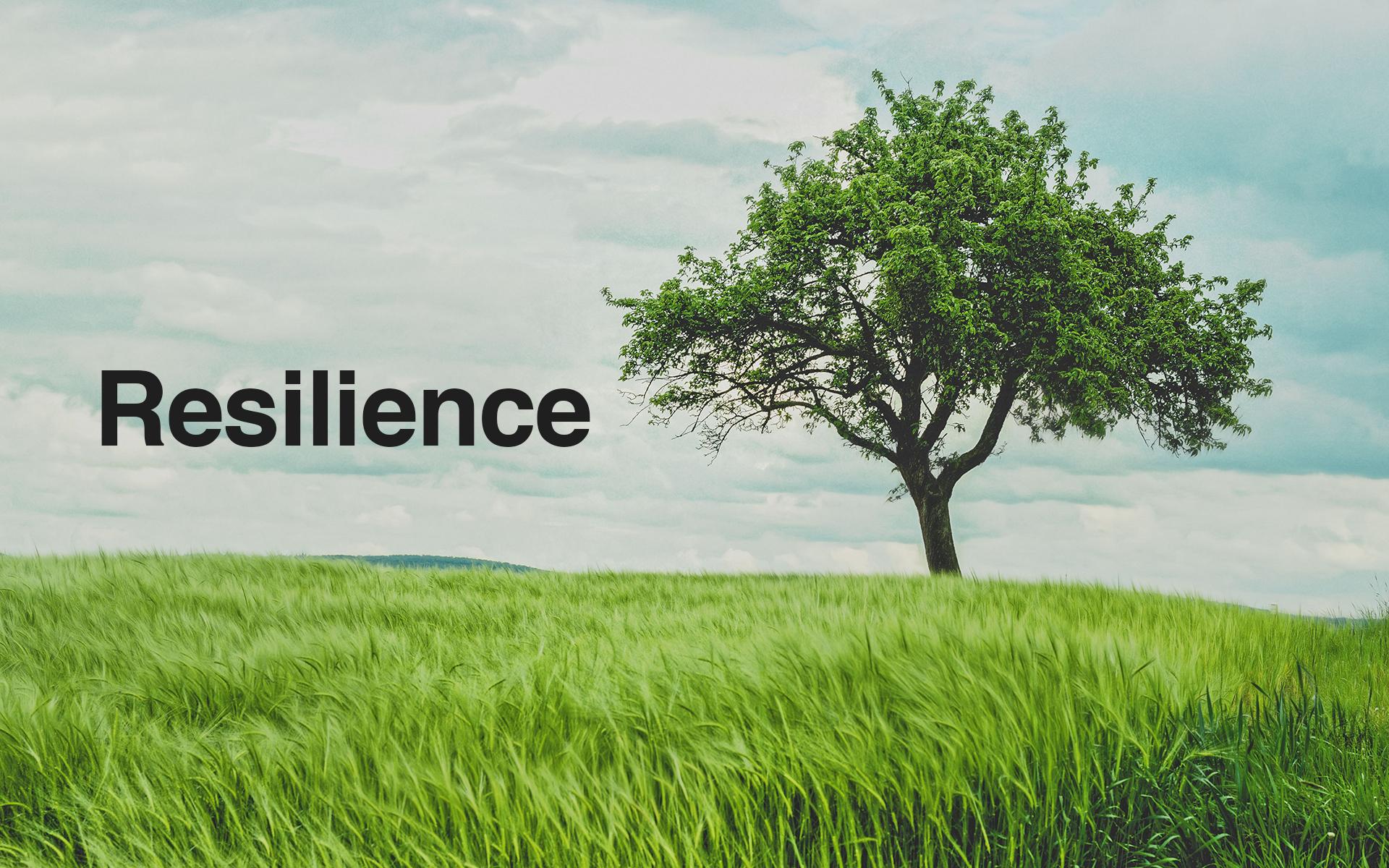 Resilience2.jpg