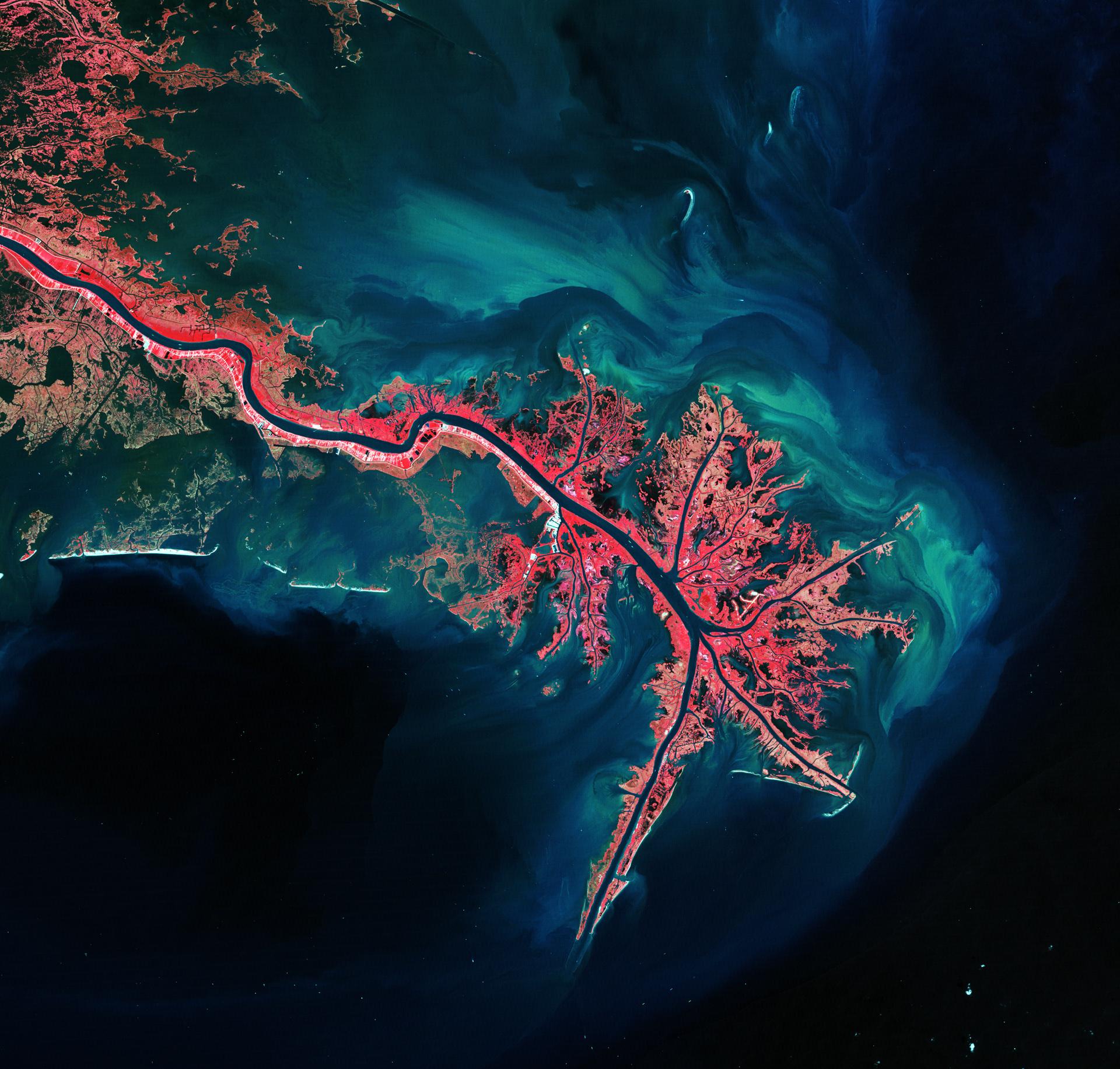Mississippi River Delta-Image Copyright USGS/ESA