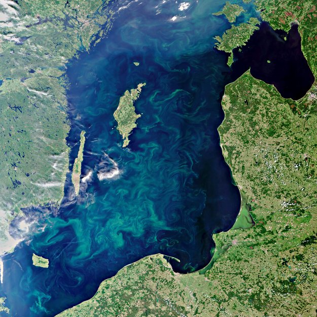 Bloom-filled Baltic-Copyright European Space Agency (ESA)