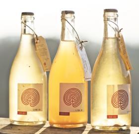 wijnen van Costadila bij www.vinopertutti.nl