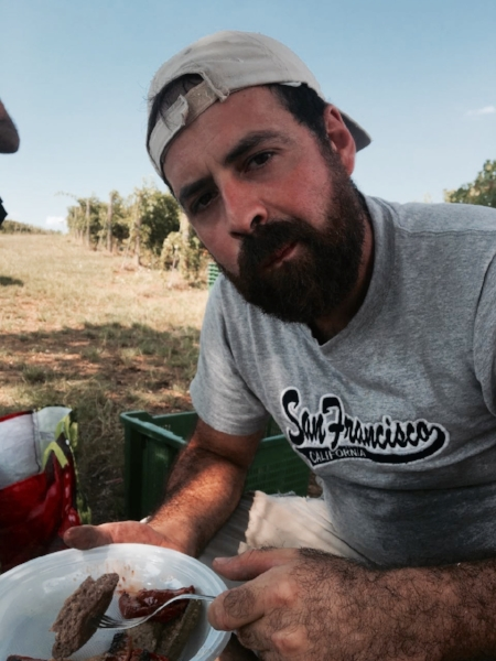 Lunch in de wijngaard