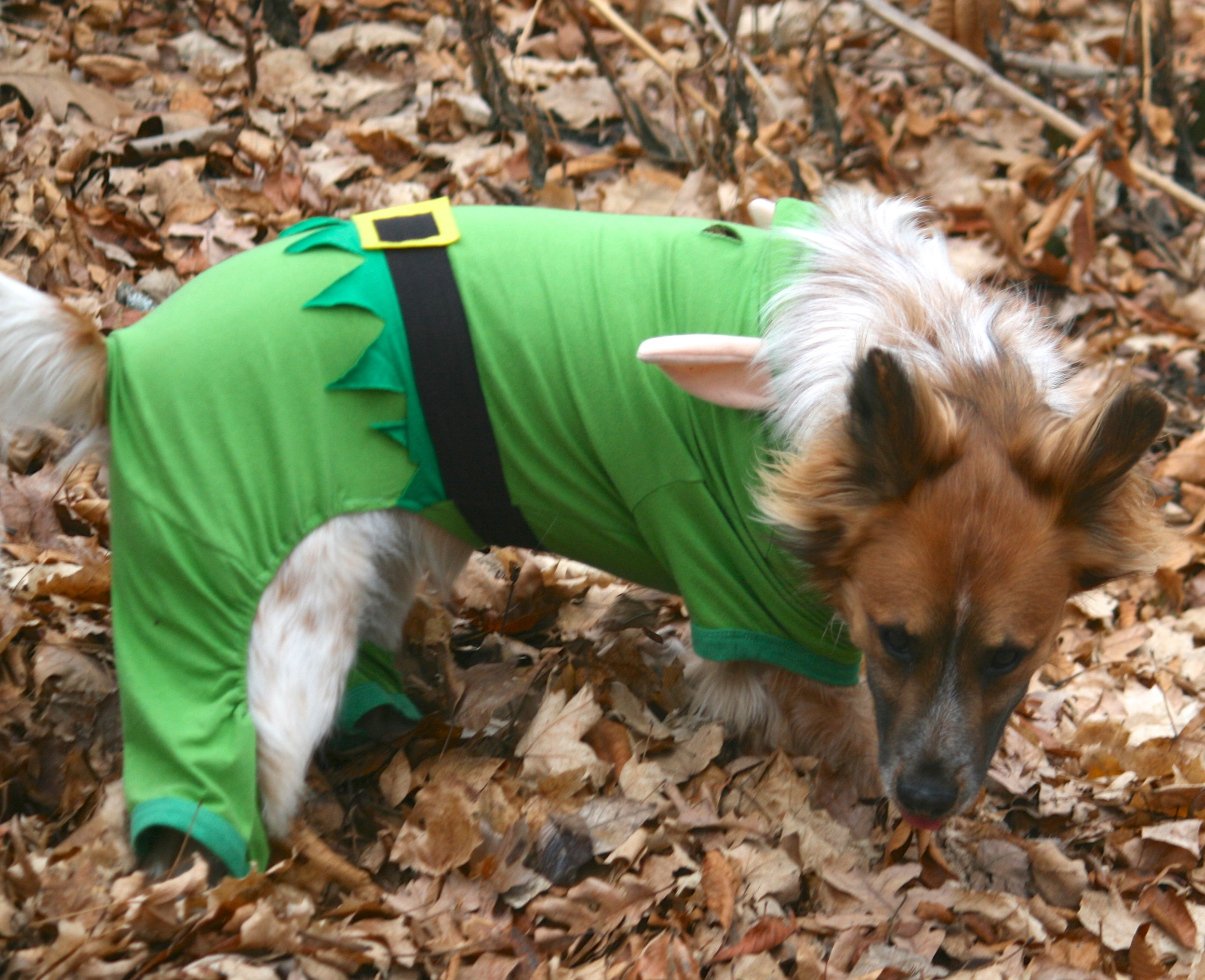 Does this elf suit make me look fat?