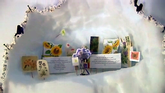The shrine of/to flowers, garlanded by popcorn and preserved in the ice under the magnetic south pole.