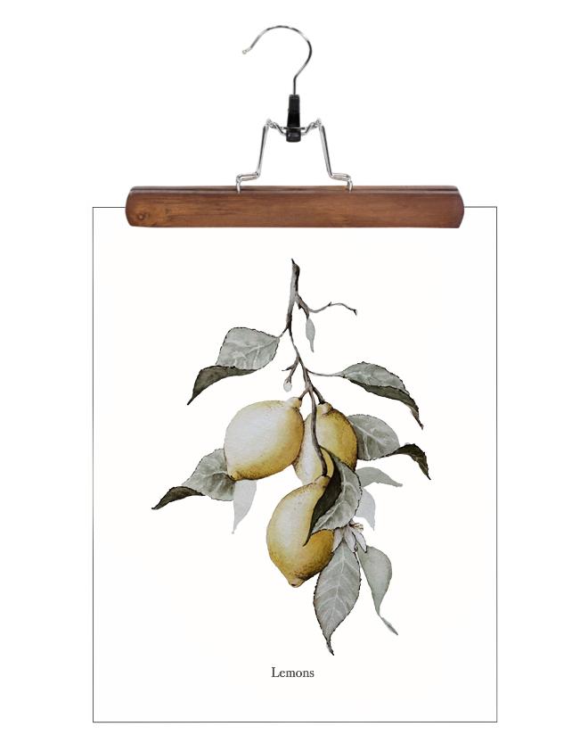 lemons.web.jpg