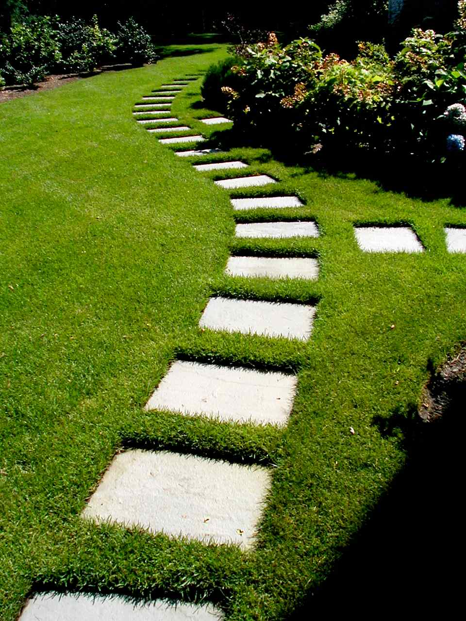 +StepStones.jpg