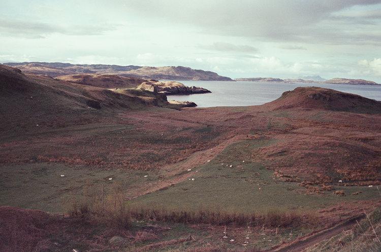 isle-of-kerrera-scotland-london-photographer-ksenia-zizina-38.jpg