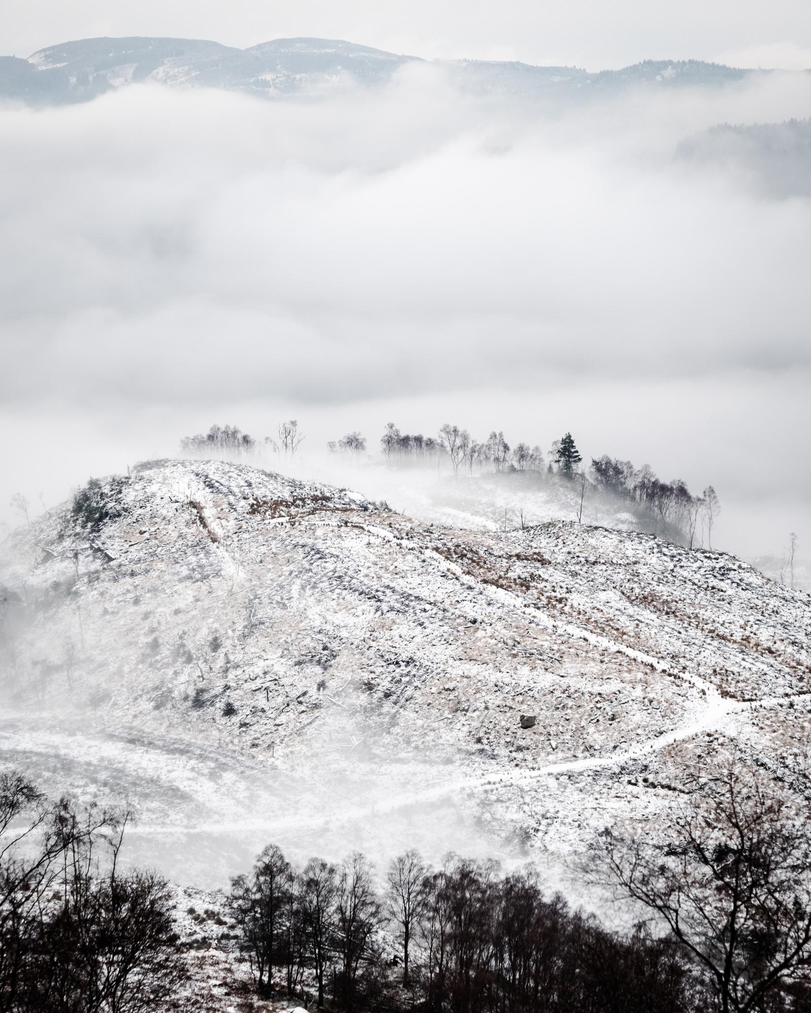 The mystical fog