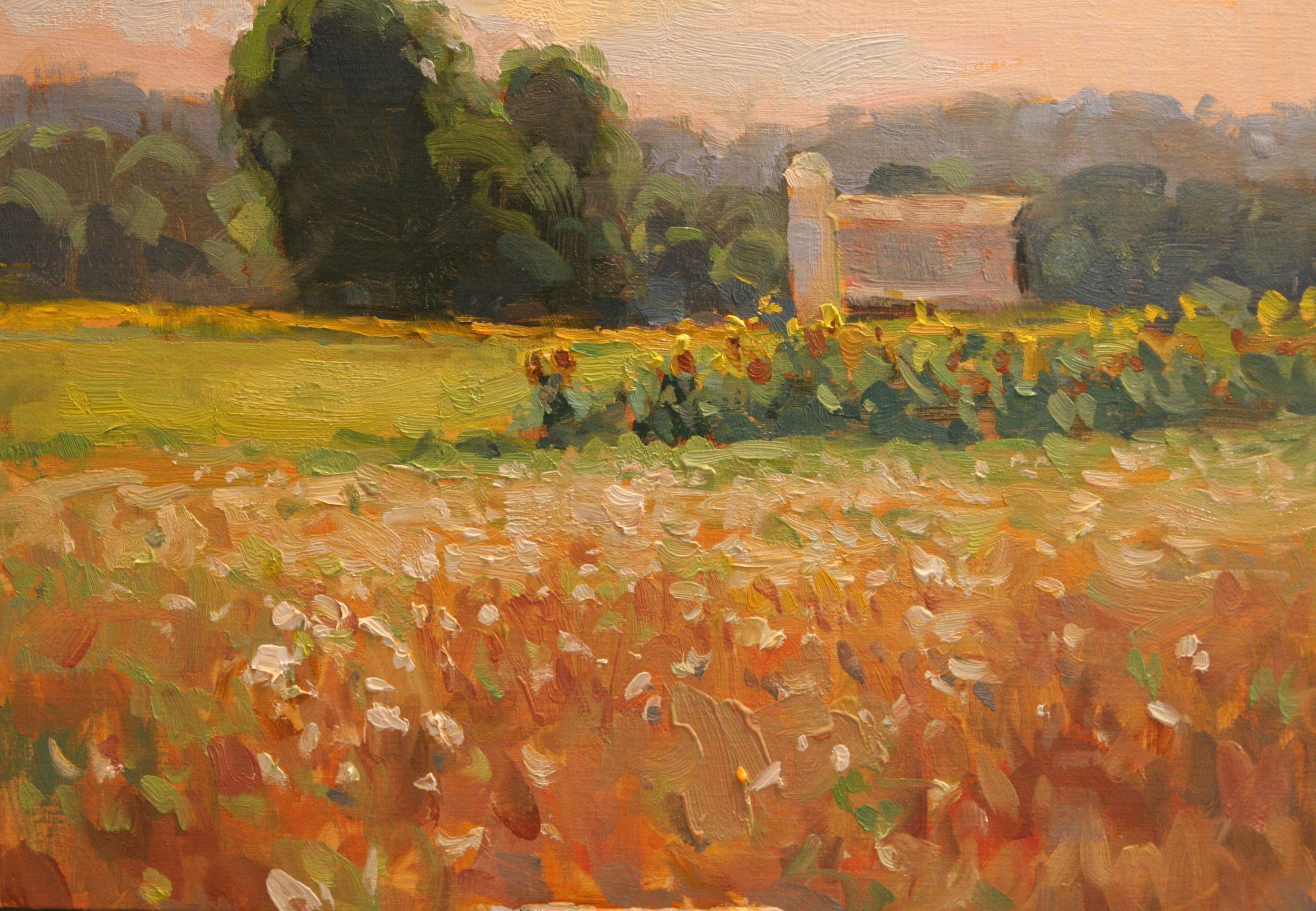 Queen Anne's Lace & Sunflowers, Richard Oversmith