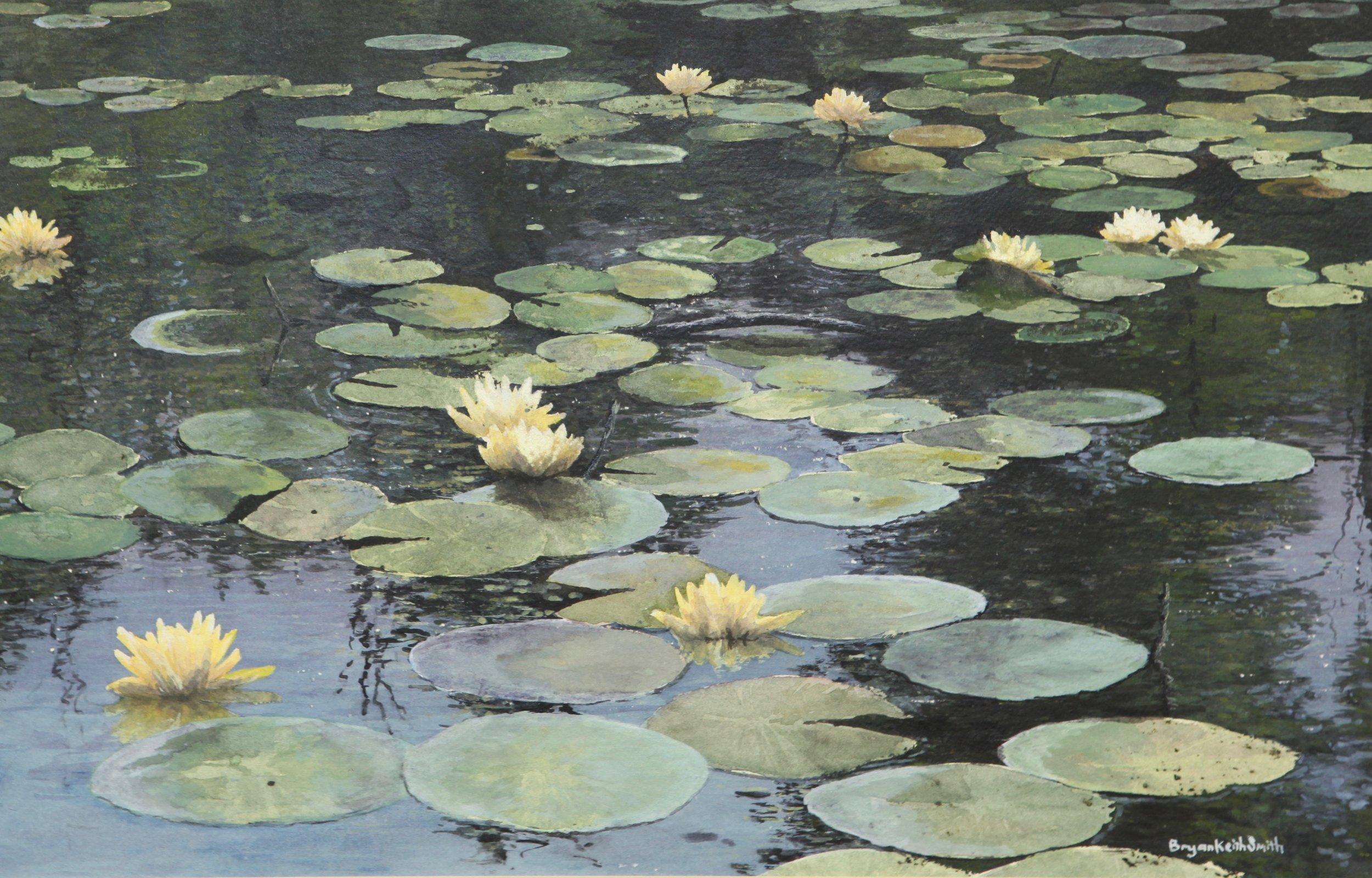 """Lily Pond II 17"""" W x 11"""" H $1500."""