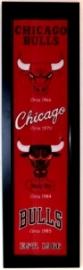 Chicago Bulls Commemorative Logo Banner - Professionally Framed 28x10