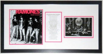 The Ramones Group Signed Concert 8x10 Photo Album Compilation - PSA DNA COA Authenticated - Professionally Framed 32x20