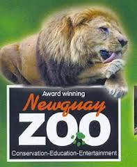Newquay zoo.jpg