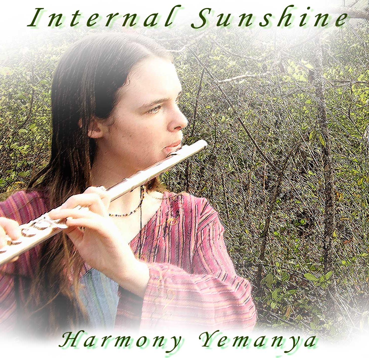 Internal Sunshine.jpg