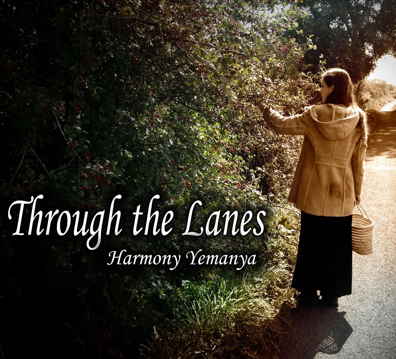 Through the Lanes.jpg