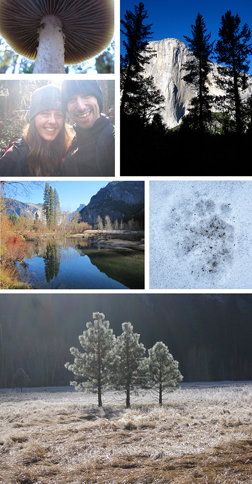 YosemiteThanksgiving2011.jpg