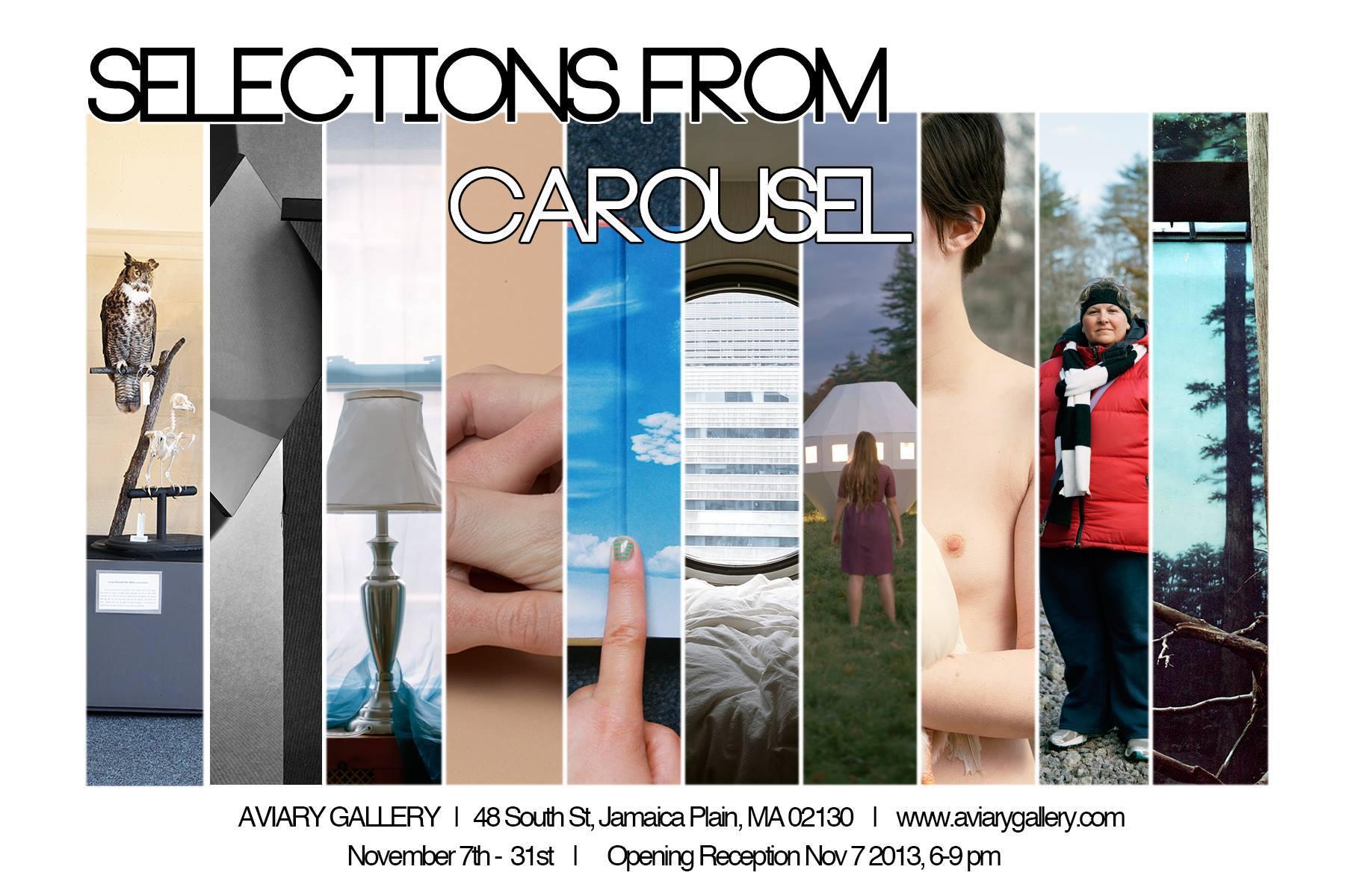 Renee Ricciardi Selections from Carousel Aviary November 2013.jpg