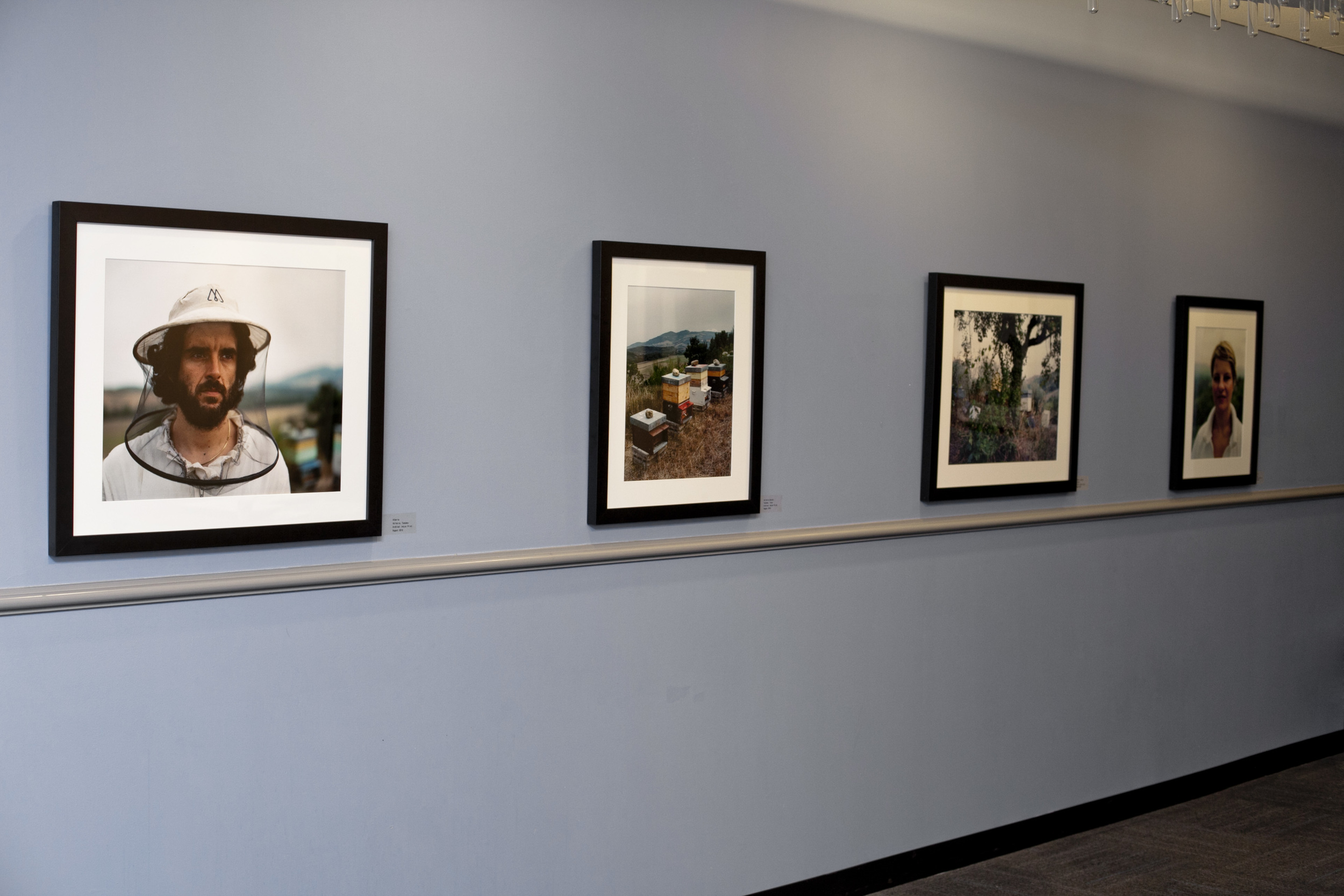 Installation View at the Gallery of the Warner Babcock Institute for Green Chemistry