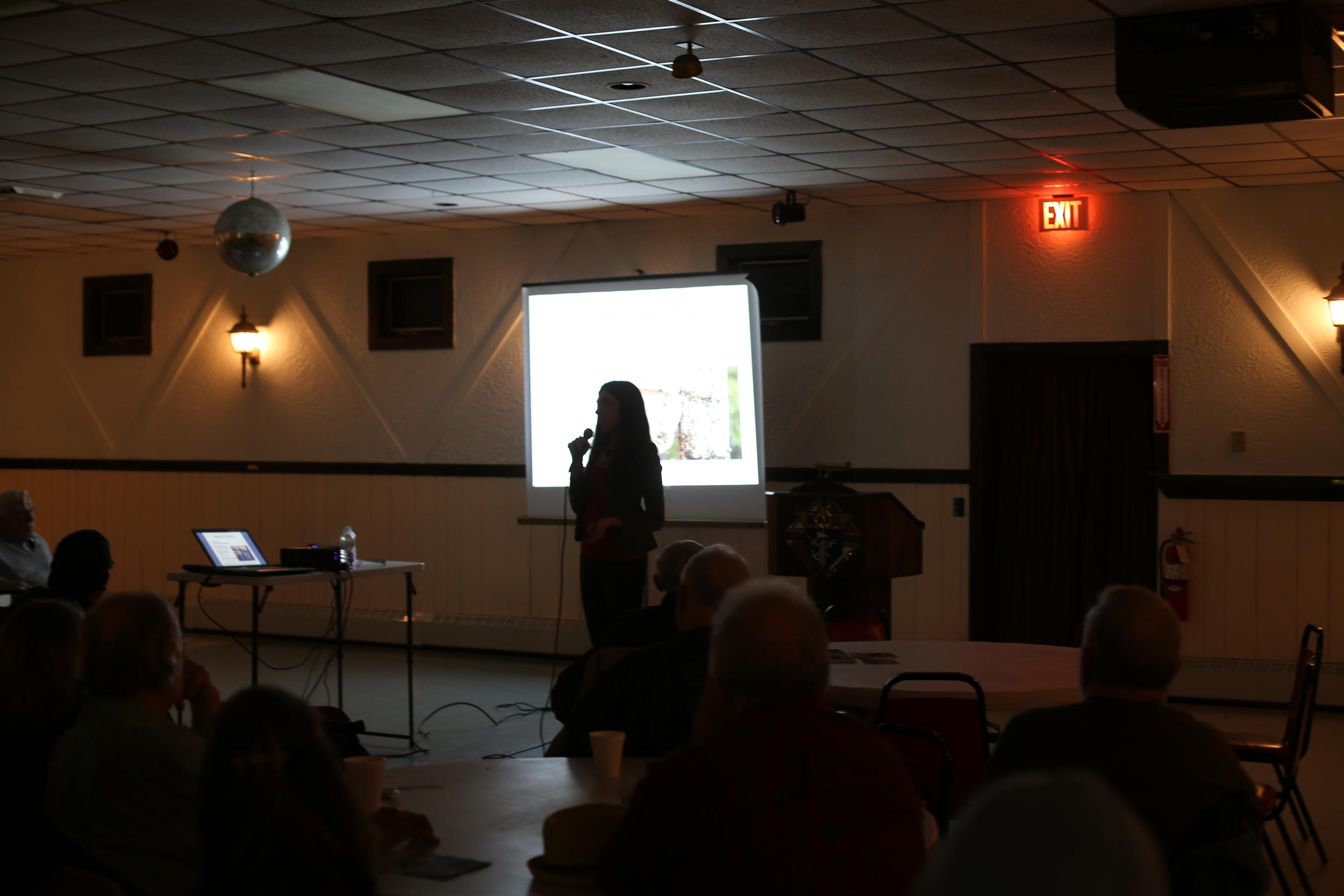Renee Ricciardi Artist Talk Worcester (1).JPG