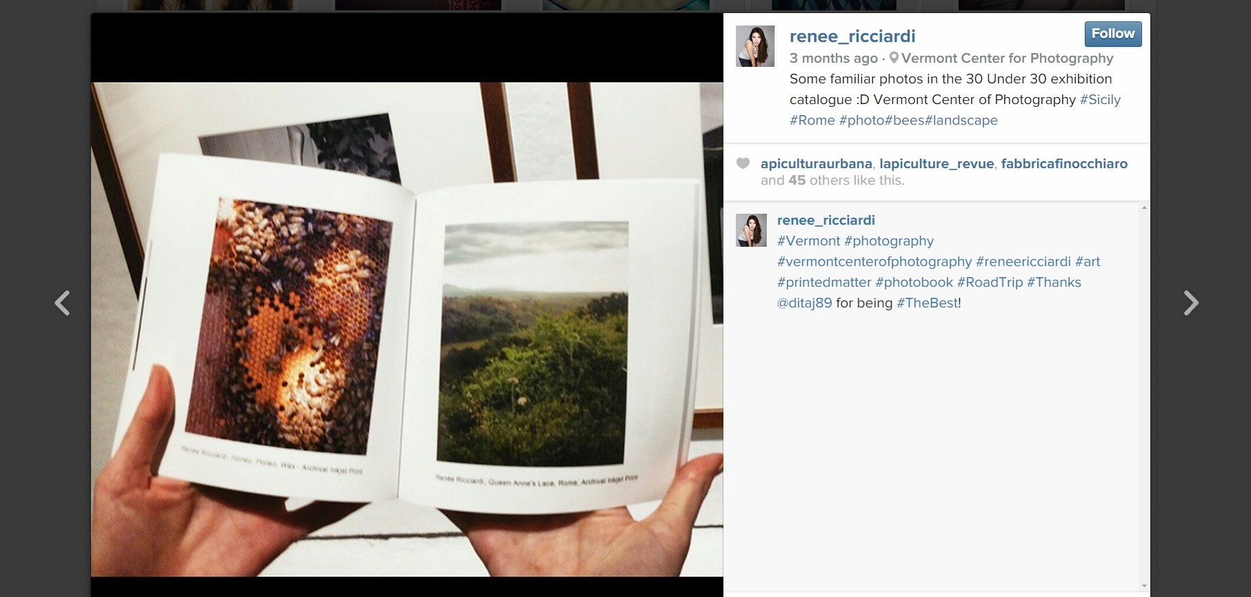 My Images in the VCP Catalogue - Screenshot from Instagram @Renee_Ricciardi