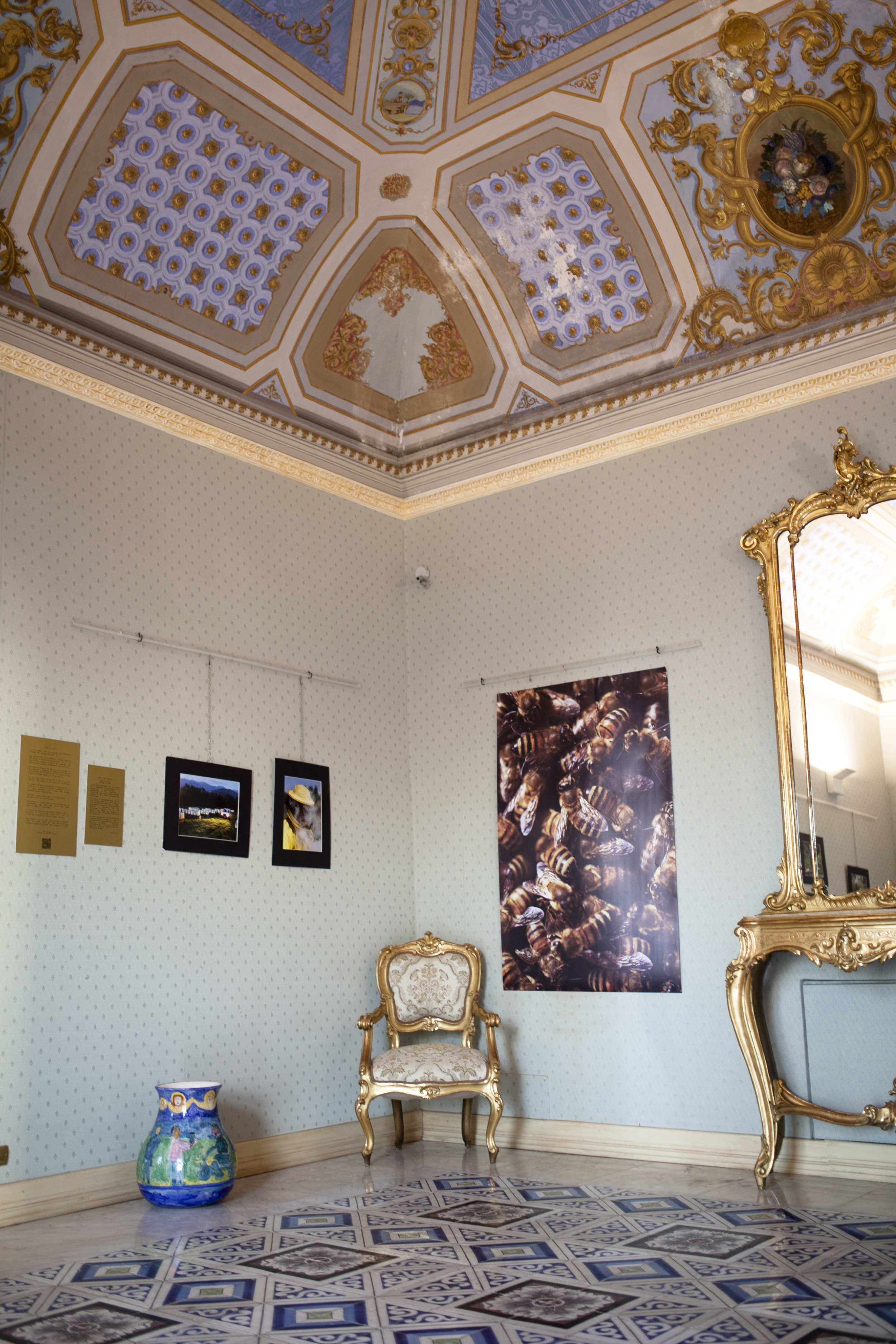 Renee Ricciardi Art Exhibit Silicy_4.jpg