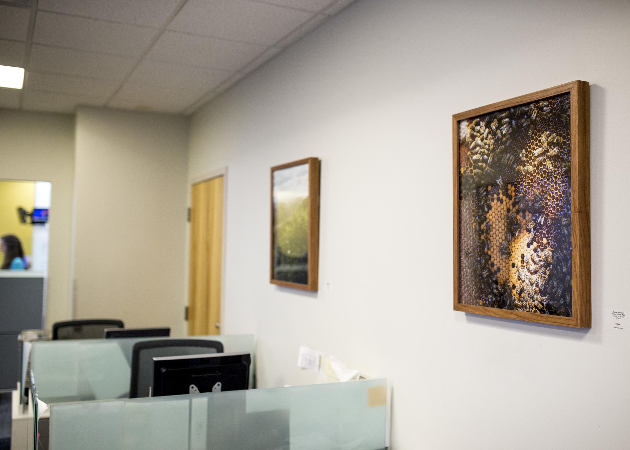 Renee Ricciardi FPAC WBUR Art Lending Program_2.jpg