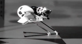 Bio-inspired Flying Robots  by Sabine Hauert, EPFL