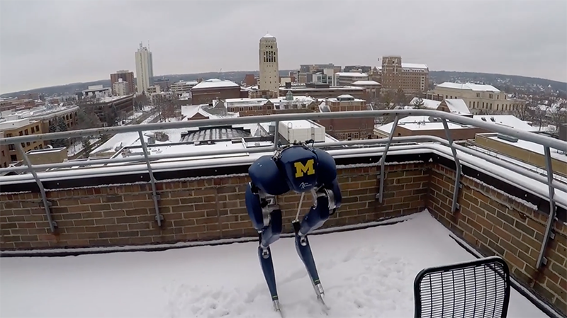 Cassie Blue's First Time to Play in the Snow by Michigan Robotics Dynamic Legged Locomotion Lab