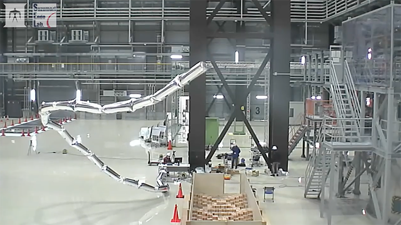 Giacometti Arm with Balloon Body by Suzumori Endo Robotics Laboratory