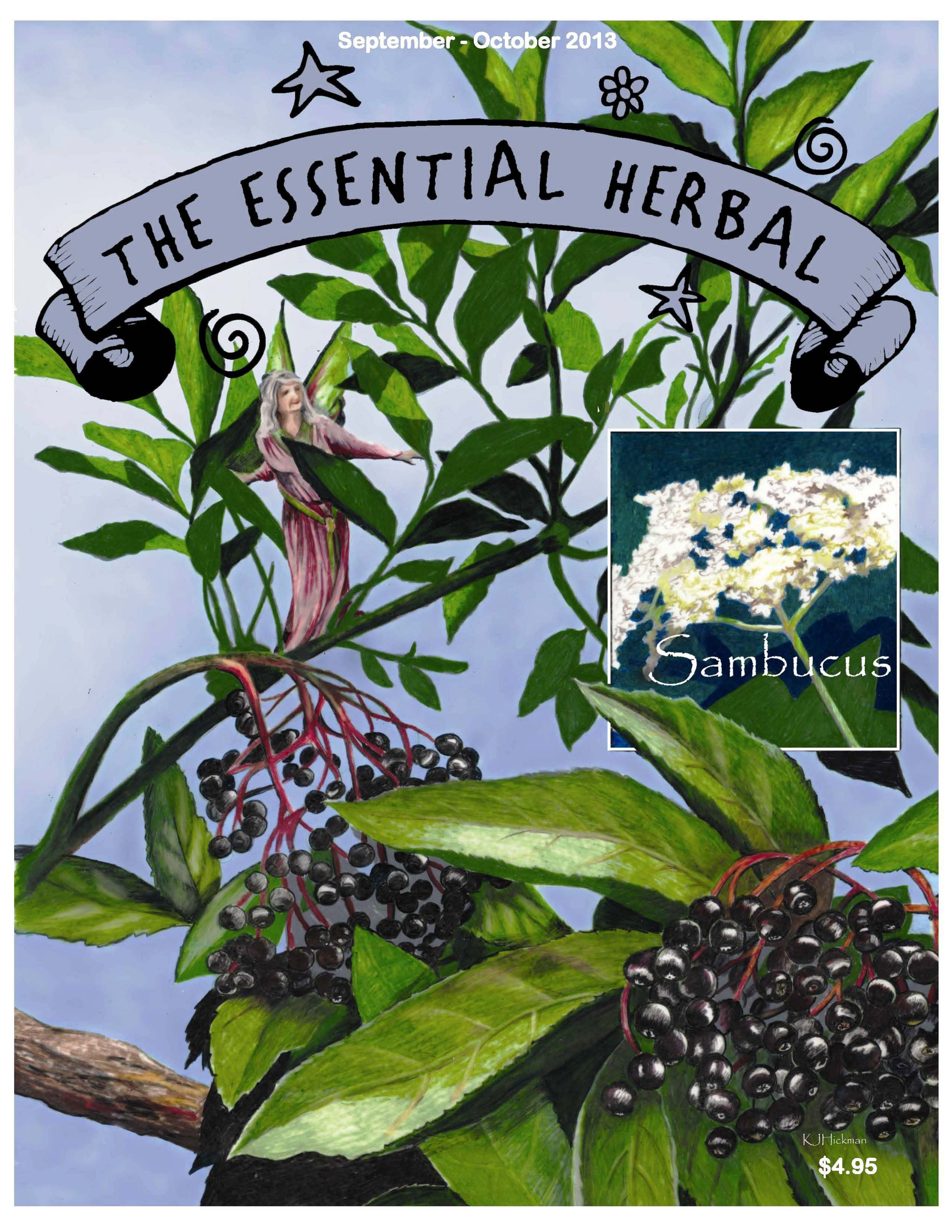 The essential herbal affiliate cover.jpg