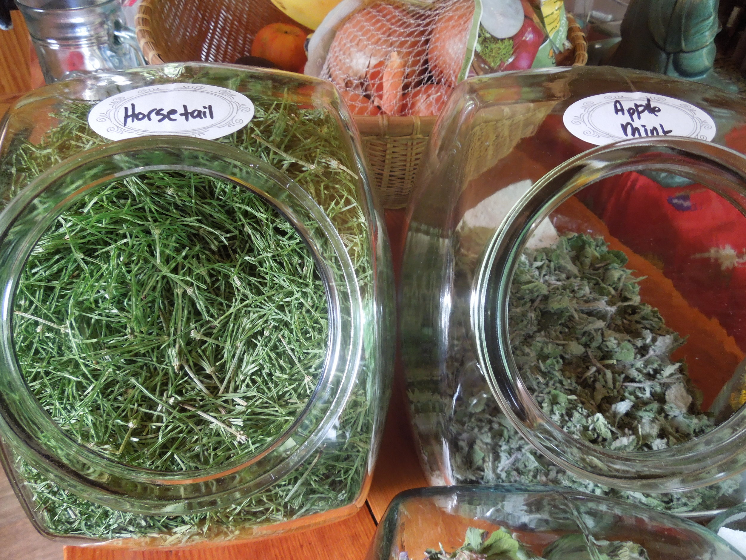 Horsetail and Apple Mint