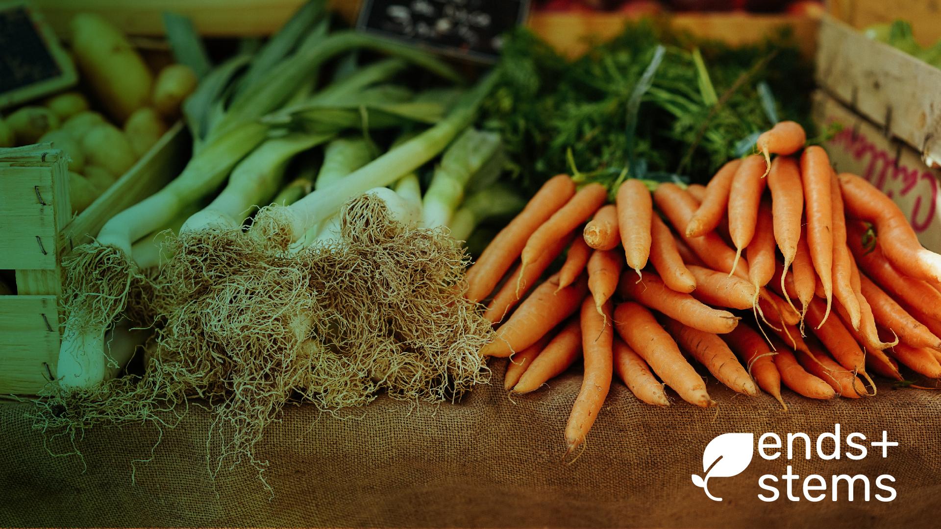 veggies-small-01.jpg