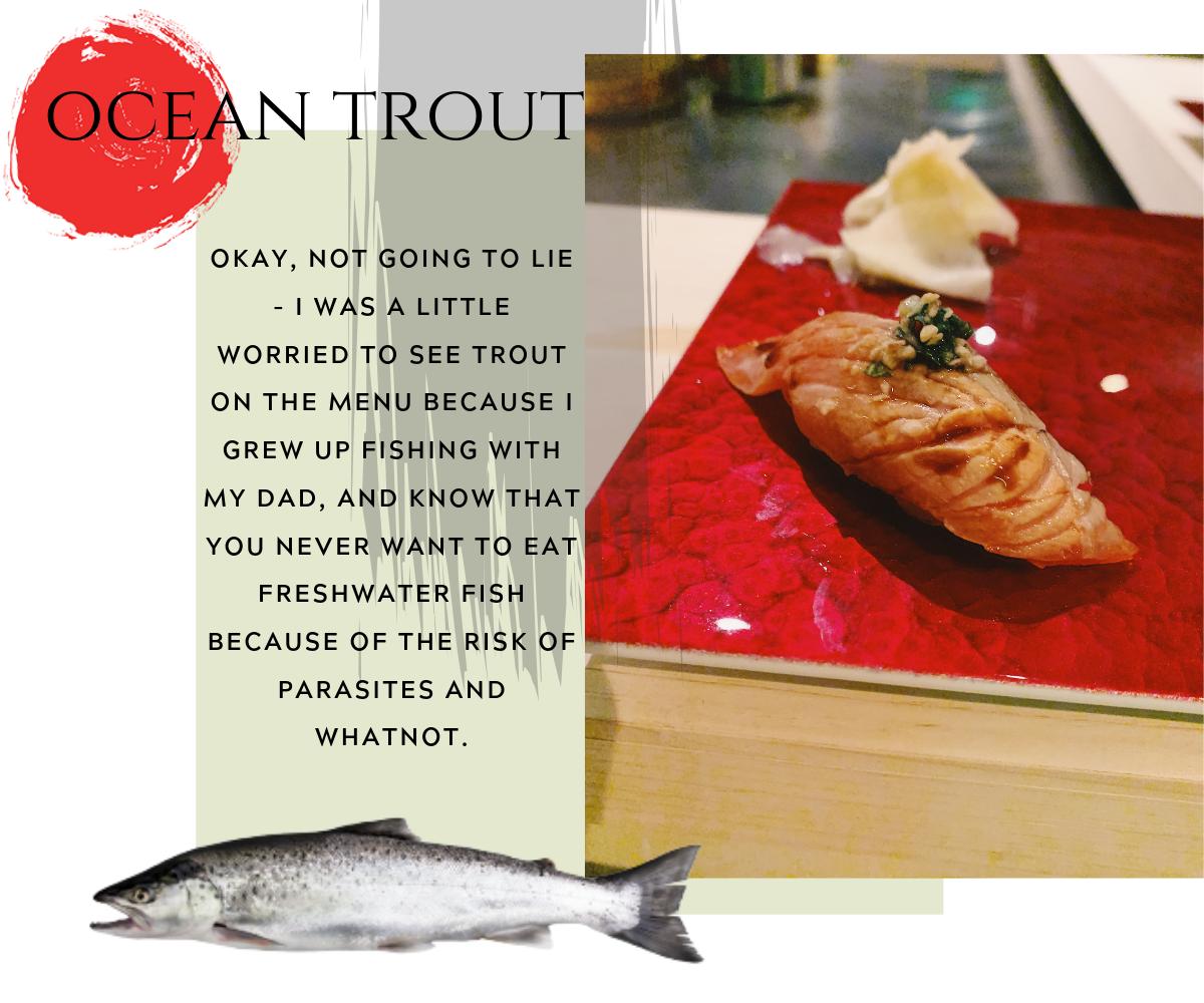 Ocean Trout (2).png