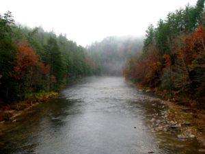 Autumn-in-Oconee-County-300x225.jpg