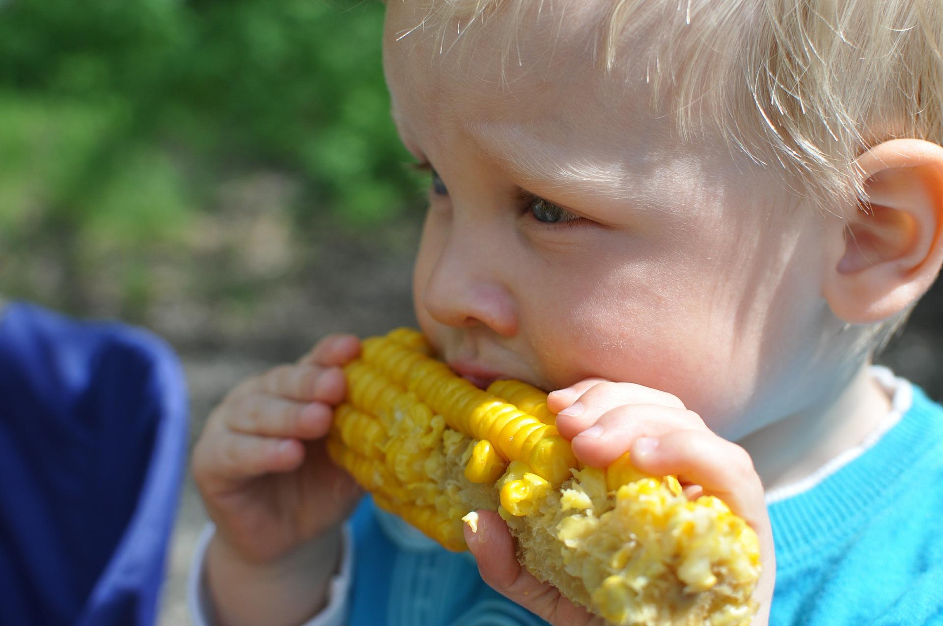 child eating corn.jpg