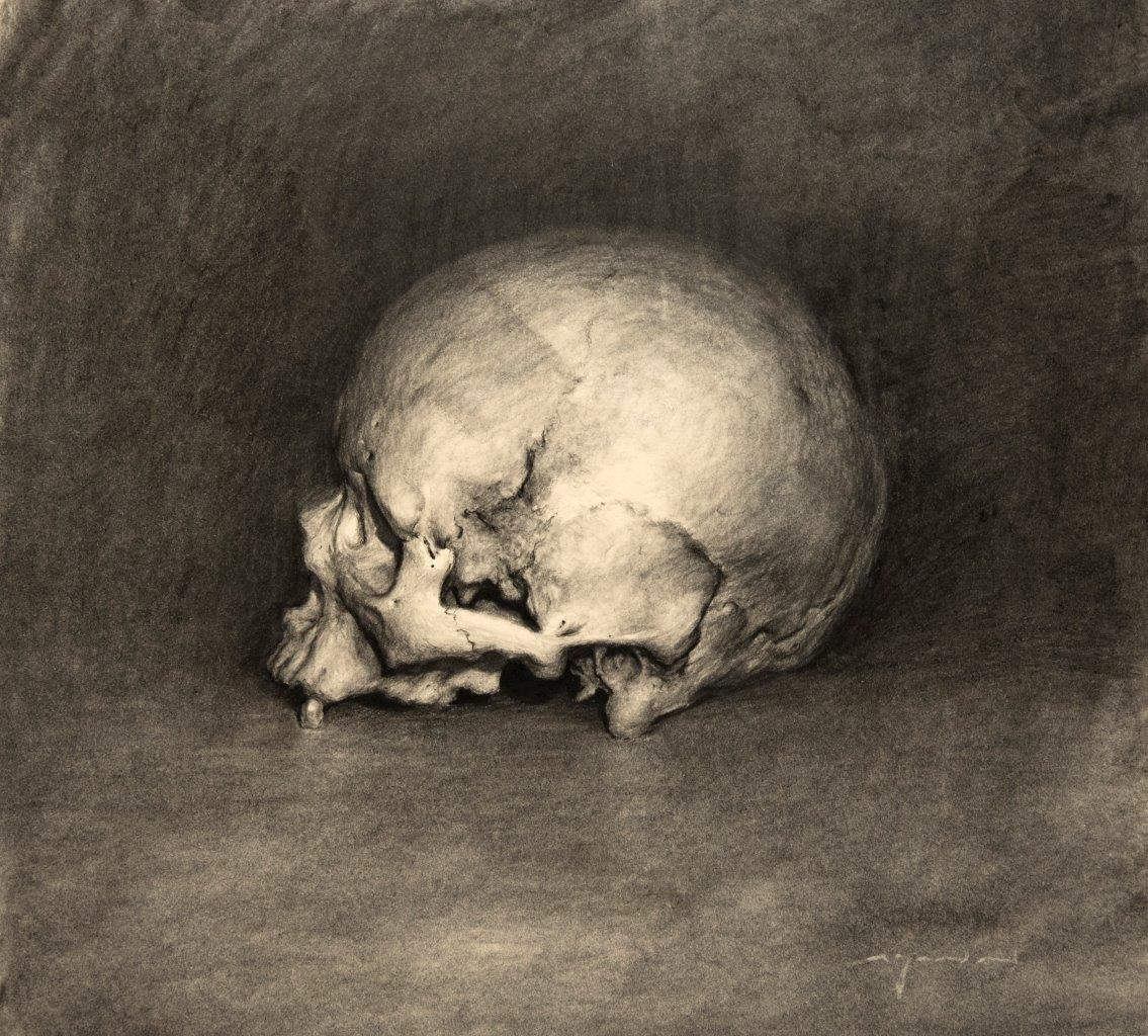 Homo Sapiens - 13 x 11 inches - Charcoal on Paper - 6/2014