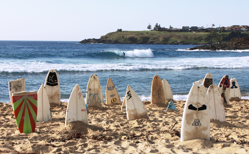 1000 Surfboard Graveyard - Creative Project — CHRIS ANDERSON