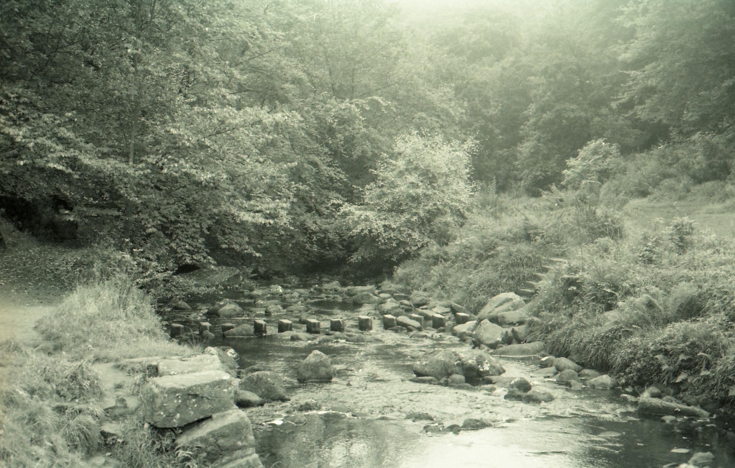 (Camera: Canon EOS 750 Film: Kodak BW400CN Location: Hardcastle Craggs, Hebden Bridge)
