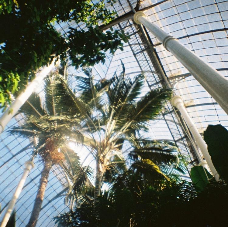 Edinburgh+Botanical+Gardens.jpg