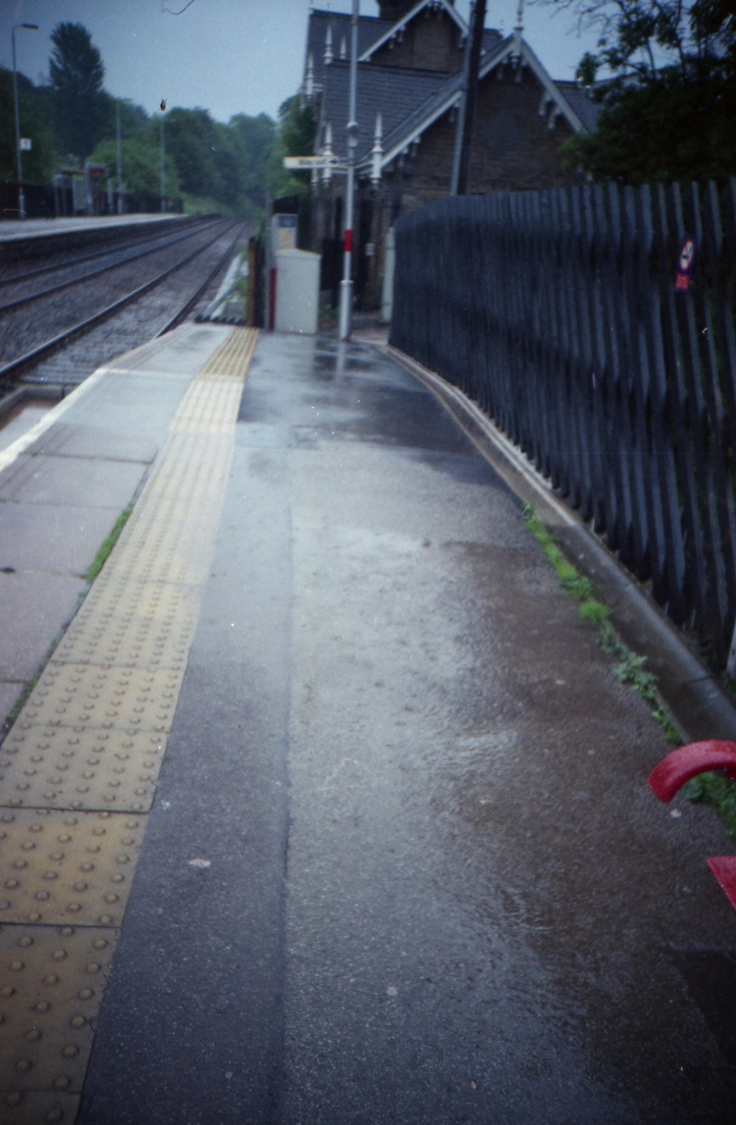 162/366 - It rained. A lot.