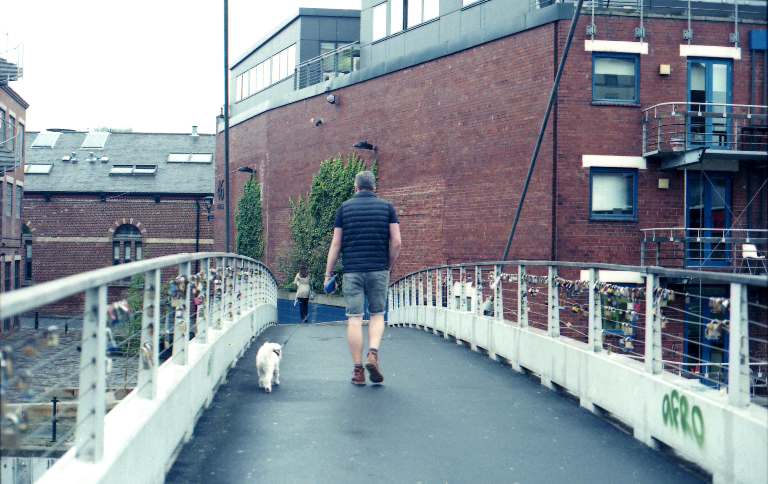 193/366 - I see this man with his dog every morning on my way to work. Maybe one day I'll be brave enough to take a proper photo of them but for now, this is as brave as I get ha.