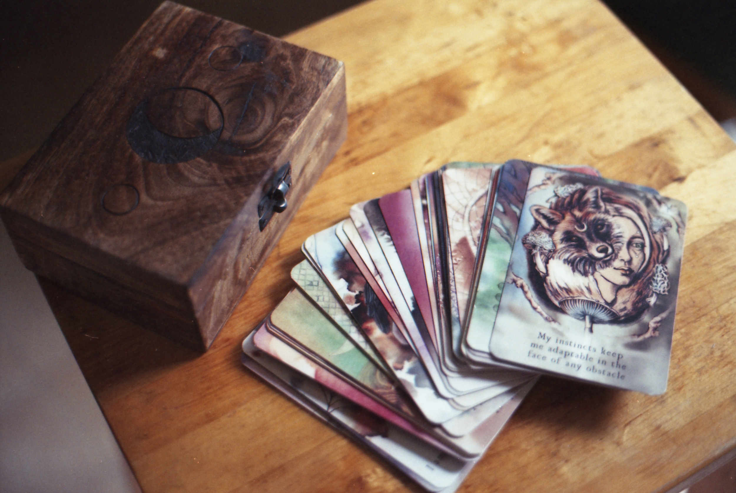 203/366 - After saying I wouldn't buy any more cards, I bought the Moon Deck oracle... Oops. But it is so very lovely.