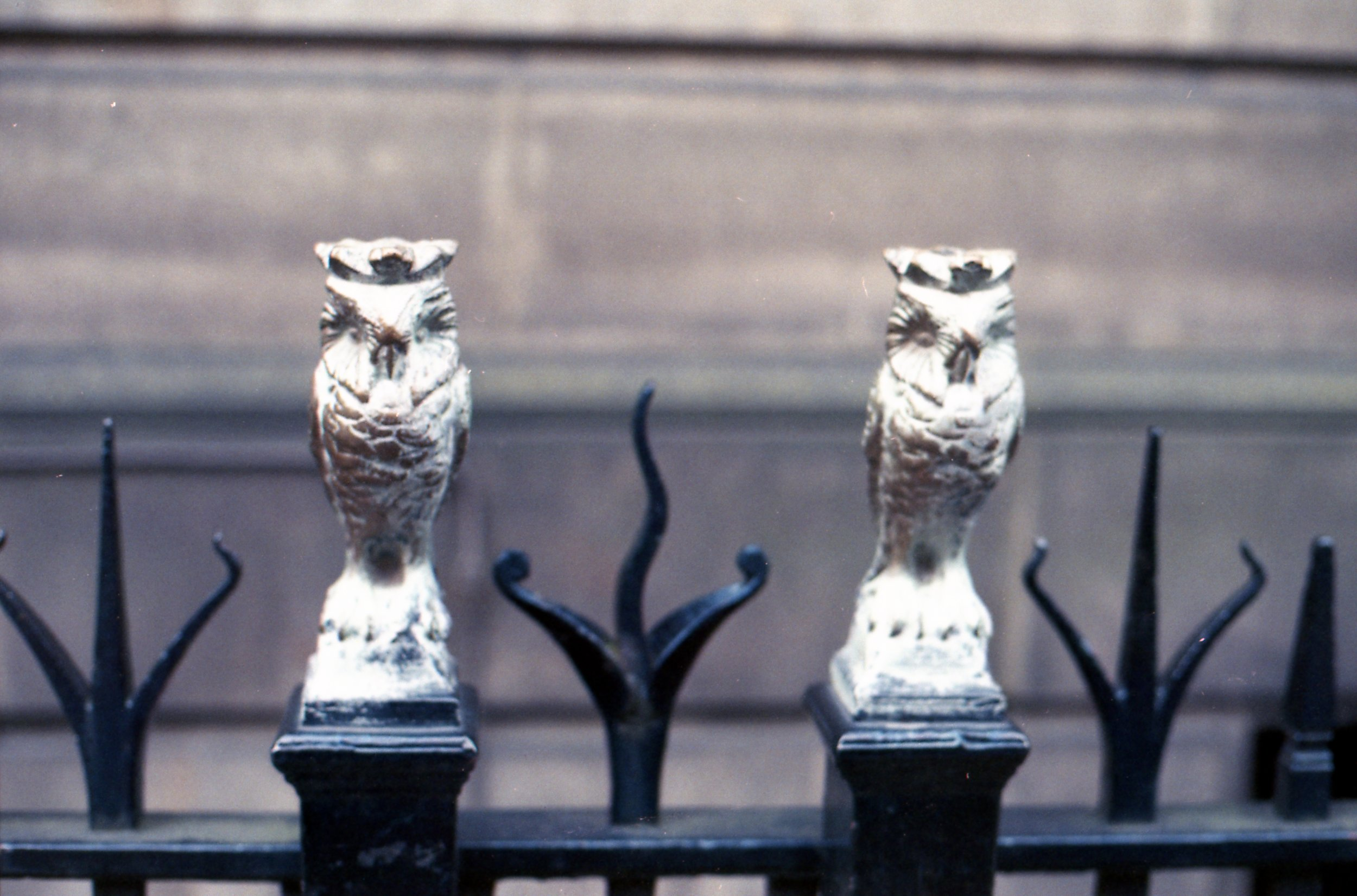 209/366 - I've mentioned  before that owls are a thing in Leeds  - so here are two more. Aren't they pretty!