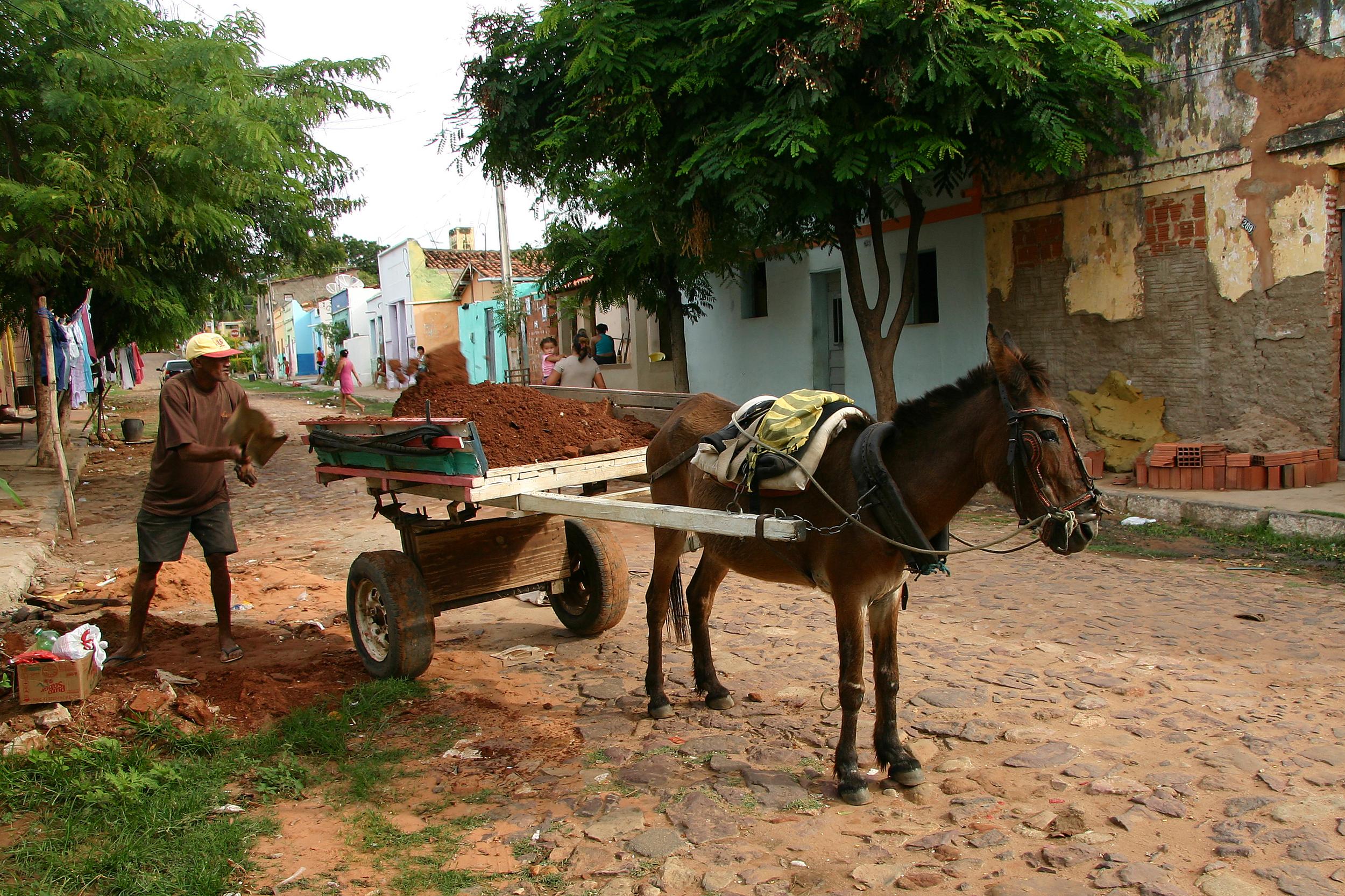 Brasilien 210.jpg