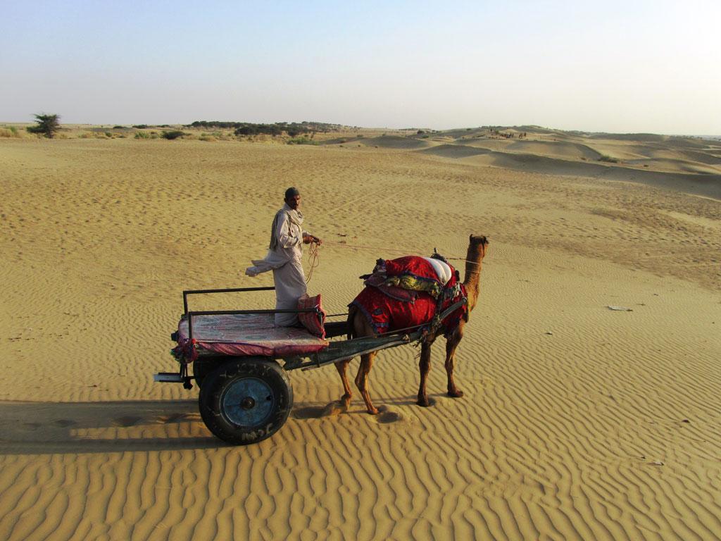 Jaisalmer Photo credit: Rustom Katrak