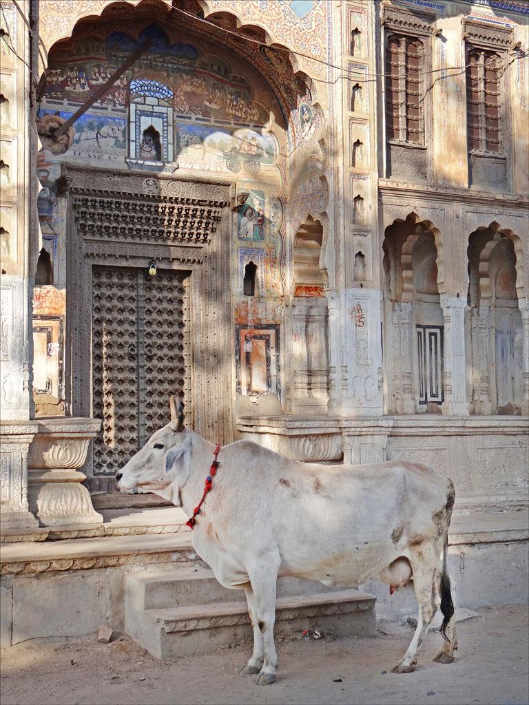 Fatehpur, Shekhawati Photo credit:  Jean-Pierre Dalbéra