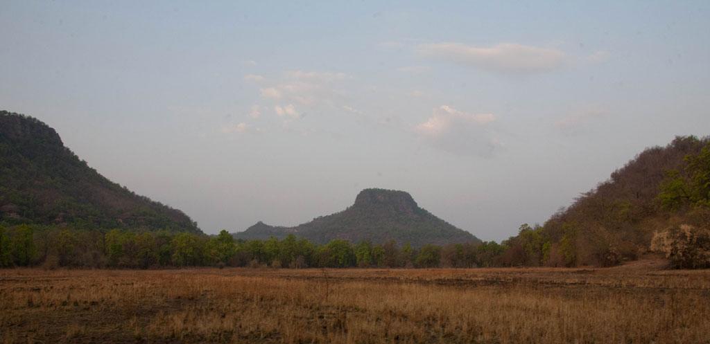 Bandhavgarh National Park Photo credit:  JP Bennett